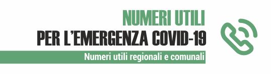 Immagine Numeri Regionali